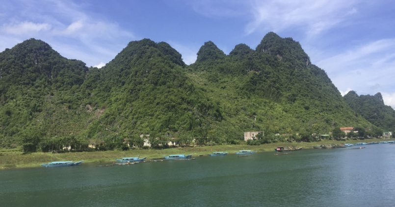Dónde alojarse en Phong Nha, Vietnam