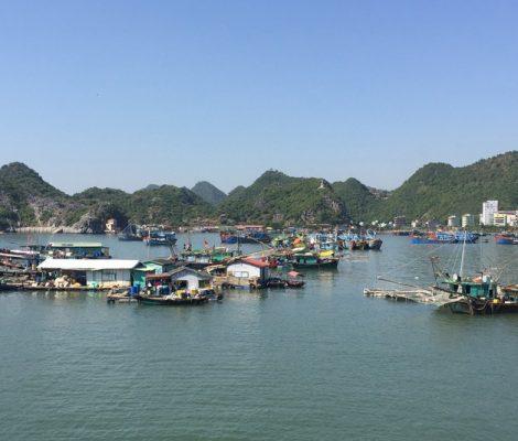 Dónde alojarse en Cat Ba, Vietnam
