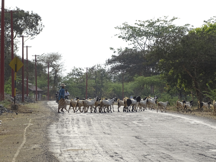 Carreteras de Bagan
