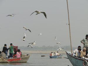 Varanasi, paseo por el río