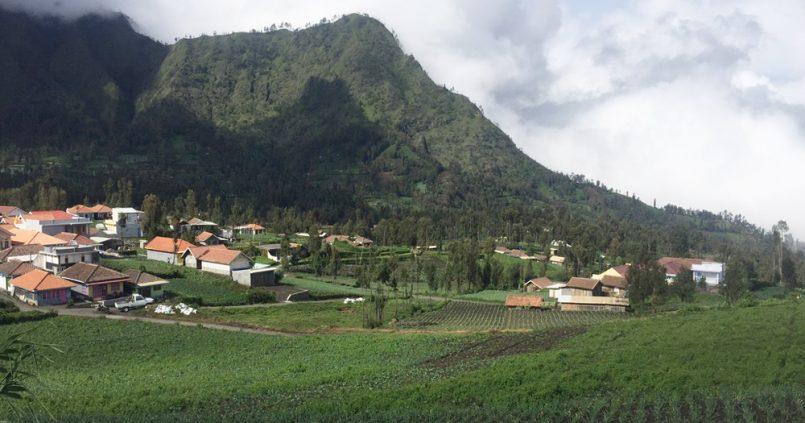 Dónde dormir en Cemoro Lawang, Bromo