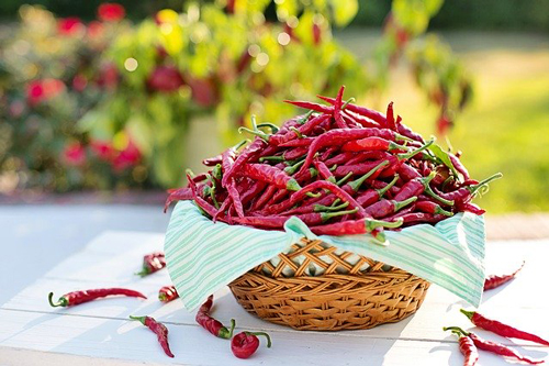 Comida picante en India