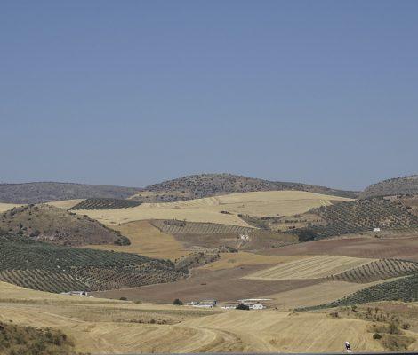 Ruta en coche por Málaga y alrededores
