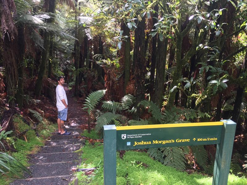 Carretera del mundo olvidados en Nueva Zelanda