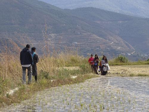 Curiosidades de Bután