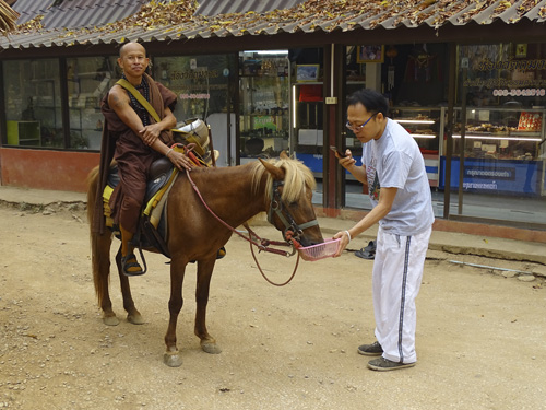 templo de los caballos en Chiang Rai